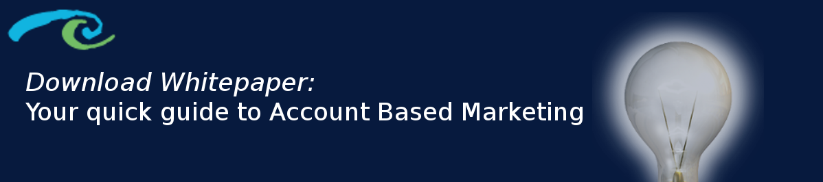 Whitepaper: Your quick guide to Account Based Marketing