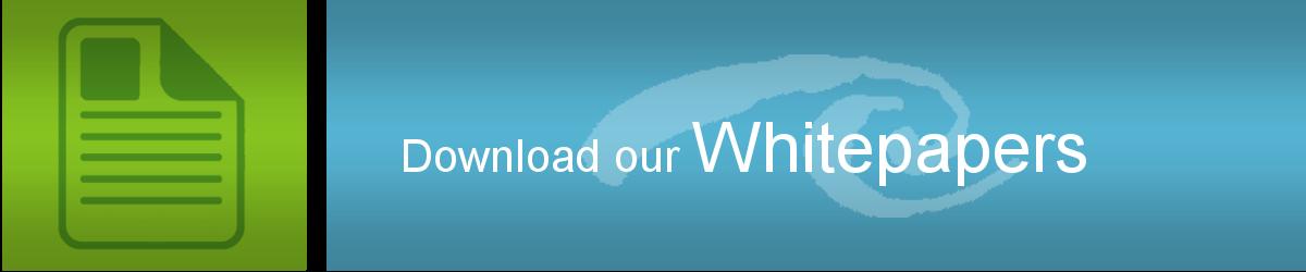 Whitepaper-Banner